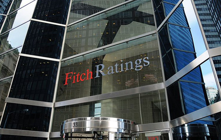 fitch ratings; tewoo group; commodities