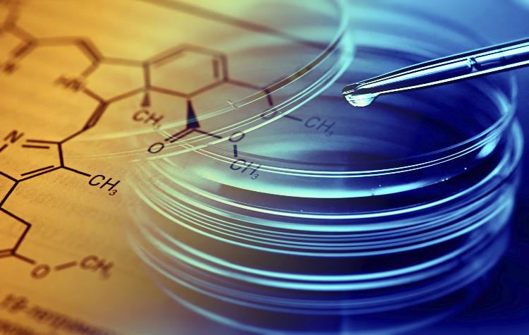 Biotechnology, Bioinformatics, Cancer, Funding